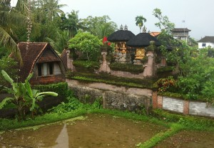 The view off the balcony in a friend's home in Ubud, Bali